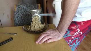 Хлеб из пророщенного зерна без муки