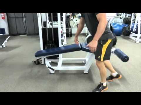 aesthetic muscle 5 day body part split routine leg
