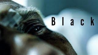 Baixar Frank Castle || Black