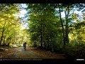 KERUCOV .ro: Traseu MTB Campina - Urleta - Cocorastii Mislii - Bustenari - Cosminele - Ploiesti