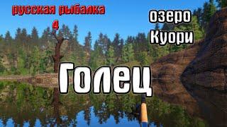 Русская рыбалка 4 рр4 rf4 озеро Куори Голец