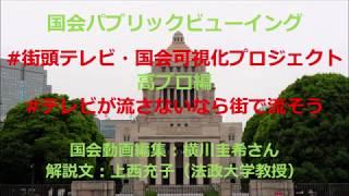 2018年5月17日 参議院厚生労働委員会 福島みずほ議員 vs 原審議官 2018...