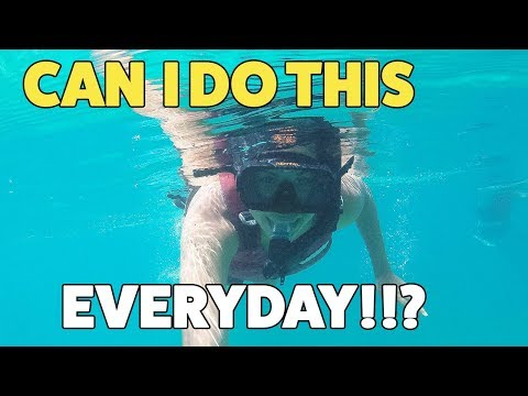 My Favorite Snorkeling Experience| St Thomas Adventure Tours | US Virgin Islands