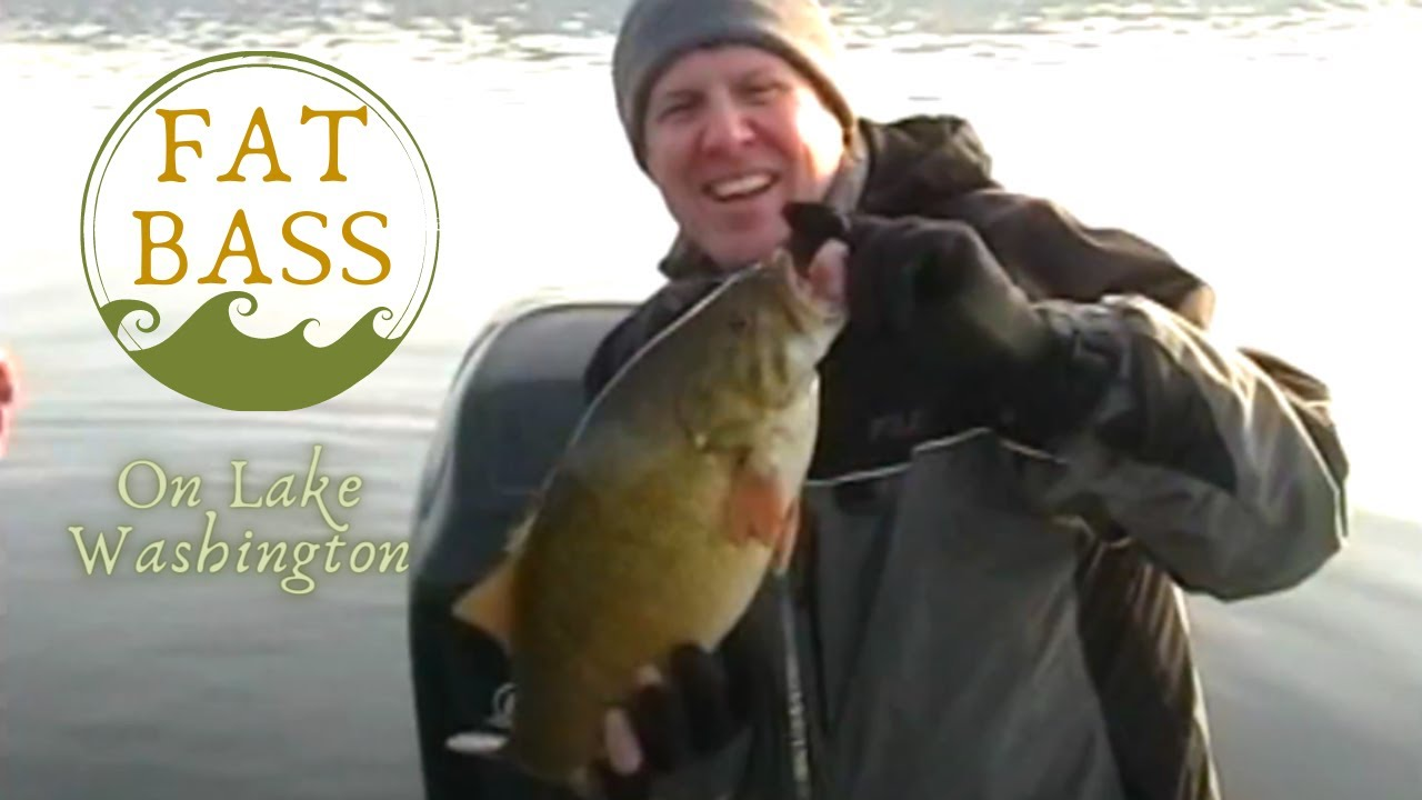Winter smallmouth bass fishing on lake washington youtube for Bass fishing washington