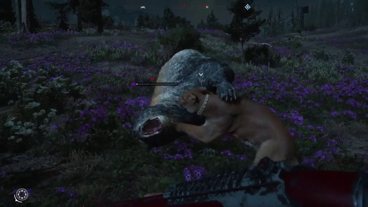 ALL ANIMAL FIGHTS