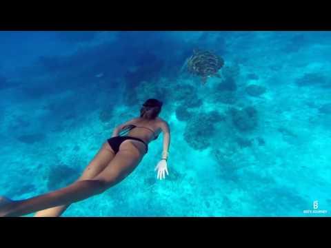 Surin Islands Thailand Freediving Trailer - Bee's Journey Travel Blog