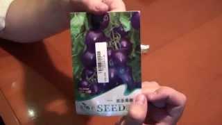Семена из Китая: фиолетовые томаты, синие розы, микро арбузы, радужные розы