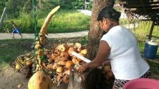 Шри-Ланка Online #20. Продавщица кокосов. Закат