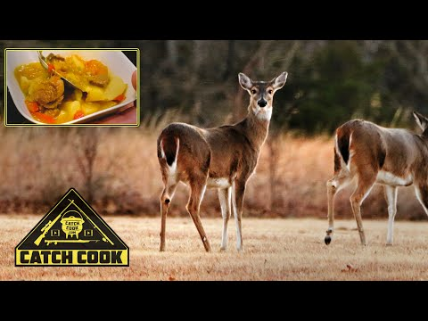 Deer stew for dinner, make your own jerkey and biltong | catch cook | Nebraska, USA