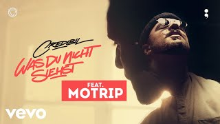 WAS DU NICHT SIEHST feat. MoTrip // prod. by The Cratez [Official Credibil]