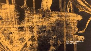 Obsidian Kingdom - TORN & BURNT - Answers Revealing (Mothboy Remix)
