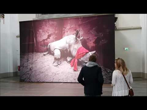 World Press Photo 2018 Amsterdam
