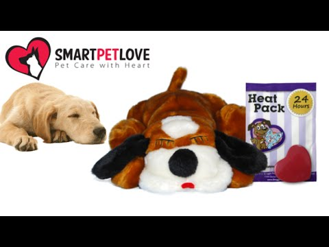 Snuggle Puppy From Smart Pet Love Youtube