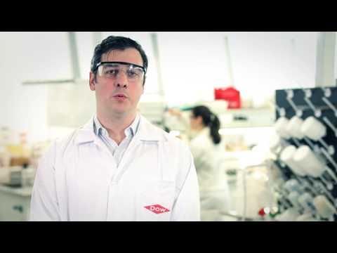 Bio-Pruf™: Sua proteção contra mofo, bactérias e algas