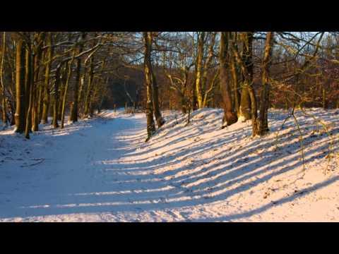 (HD 720p) Vivaldi's Four Seasons, Concerto #4 - Winter, I - Allegro