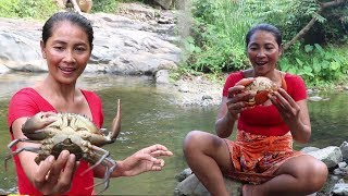 Survival skills: Catch the big crab boiled on clay for food - Cook big crab eating delicious #28