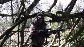 AIRGUN WOODPIGEON HUNT