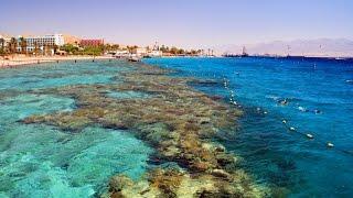 Израиль. Эйлат. Красное море. Коралловый риф(, 2016-07-03T05:24:36.000Z)