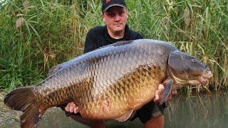 Ловим крупную рыбу(Ловим крупную рыбу http://provolos24.ru/fish.html Желаете ловить крупную рыбу, ловить рыбу на удочку мы Вам поможем..., 2016-03-26T15:08:28.000Z)