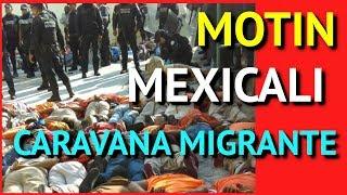 Caravana Migrante De Honduras En Mexicali Se Amotinan Causando Destrosos En INAMI