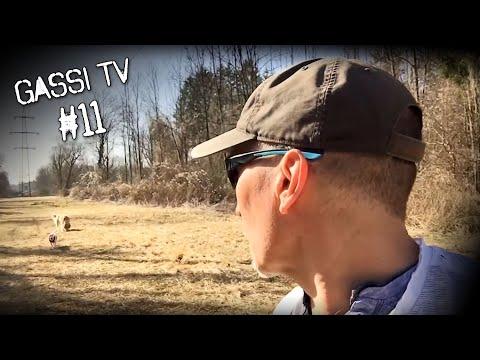 Gassi TV #11 - 2+2 = 5