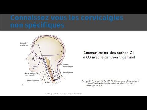Céphalées cervicogéniques