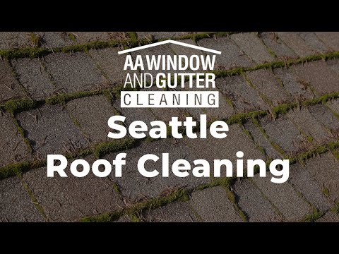 Roof Cleaning Moss Treatment Service For Seattle And Portland Aa Window And Gutter Cleaning
