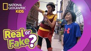 Walkway Geniuses | REAL OR FAKE? (Game Show)