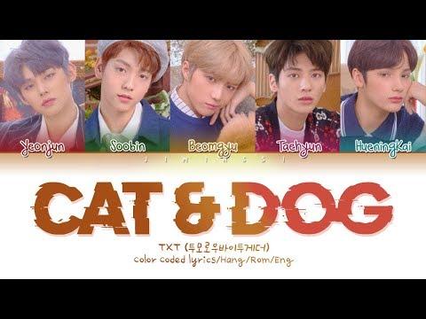 txt-(투모로우바이투게더)---'cat-&-dog'-(color-coded-lyrics-eng/rom/han/가사)