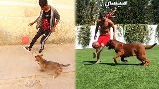 أحمد يقلد حركة ميسي في الكلب