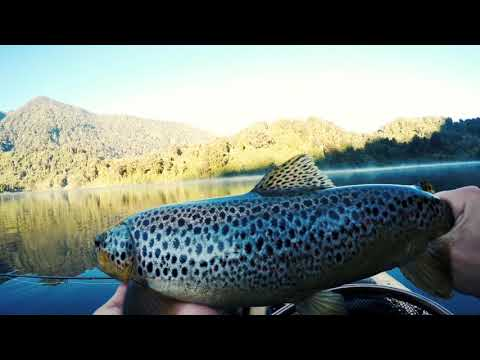 Fly Fishing Patagonia With A Mouse Fly  (South America)