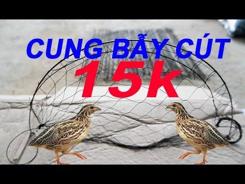 Bẫy chim cút chỉ 15k quá rẻ , cung bẫy cút giá rẻ hiệu quả