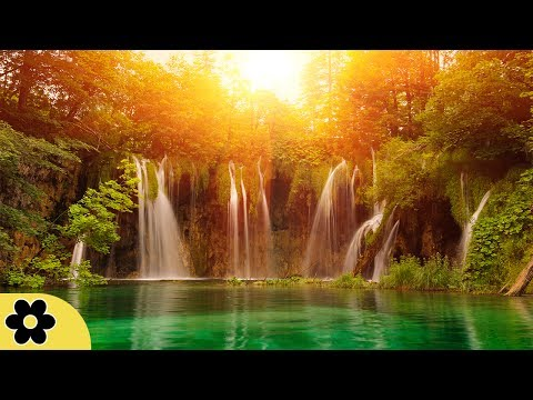 Relaxing Zen Music, Positive Energy Music, Relaxing Music, Slow Music, ✿3133C
