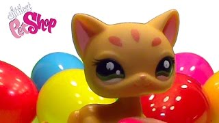 Littlest Pet Shop LPS Cats surprise eggs unboxing toys kittens