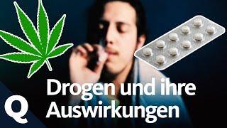 Drogenkonsum: Gefährlich oder halb so wild? (Ganze Folge) | Quarks