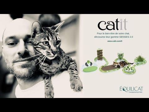 CATIT, Design Pour Le Quotidien Du Chat