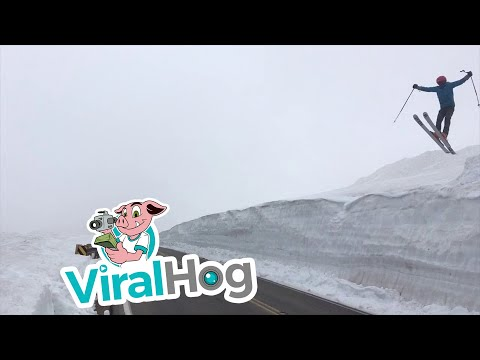 Face Full of Snow