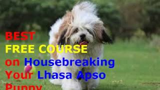 ►►►How to Potty Train a Lhasa Apso Puppy Fast ♥ Best FREE Course on Puppy Potty Training