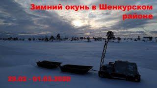 Зимний окунь в Шенкурском районе