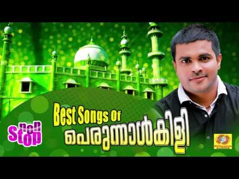 Best Songs of Perunnalkili | Non Stop Malayalam Mappilapattukal | Mappila Album | Mappila Songs