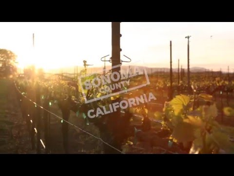Travel Guide Sonoma County, California - Seasons of Sonoma County
