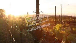Travel Guide Sonoma County, California   Seasons Of Sonoma County