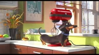 The Secret Life Of Pets - Trailer Official