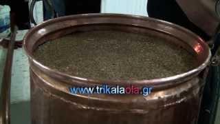 Παραδοσιακό αποστακτήριο τσίπουρου χάλκινα καζάνια σπιτικό τσίπουρο Μεγαλοχώρι Τρικάλων 15-10-13