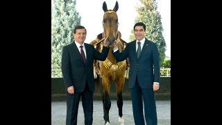 Turkmaniston prezidenti O'zbekiston prezidentiga Axalteki uchqur otini hadya etdi