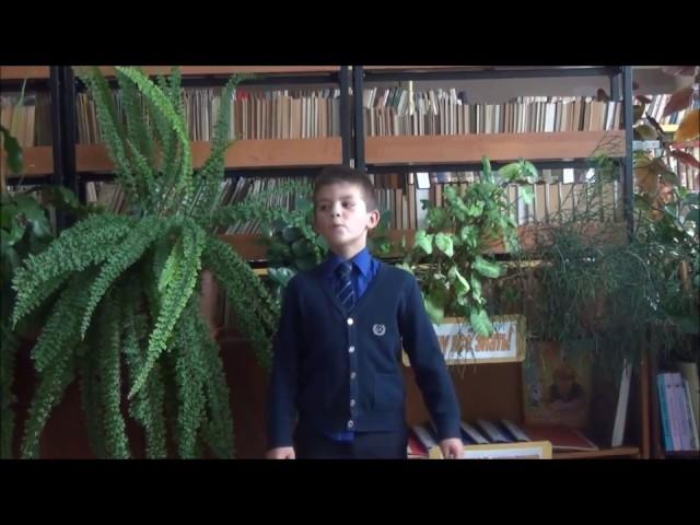 Изображение предпросмотра прочтения – СавелийПопов читает произведение «Стрекоза и Муравей» И.А.Крылова