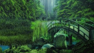 "Peaceful Relaxing Instrumental Music, Meditation Soft Music ""Mountain Bridges"" by Tim Janis"