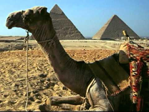 Egypt - Pyramids of Giza  - Travel Video