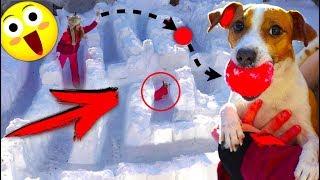 ДЖИНА ЗАСТРЯЛА - ЛАБИРИНТ ИЗ СНЕГА И ПОЛОСА ПРЕПЯТСТВИЙ | Elli Di Pets