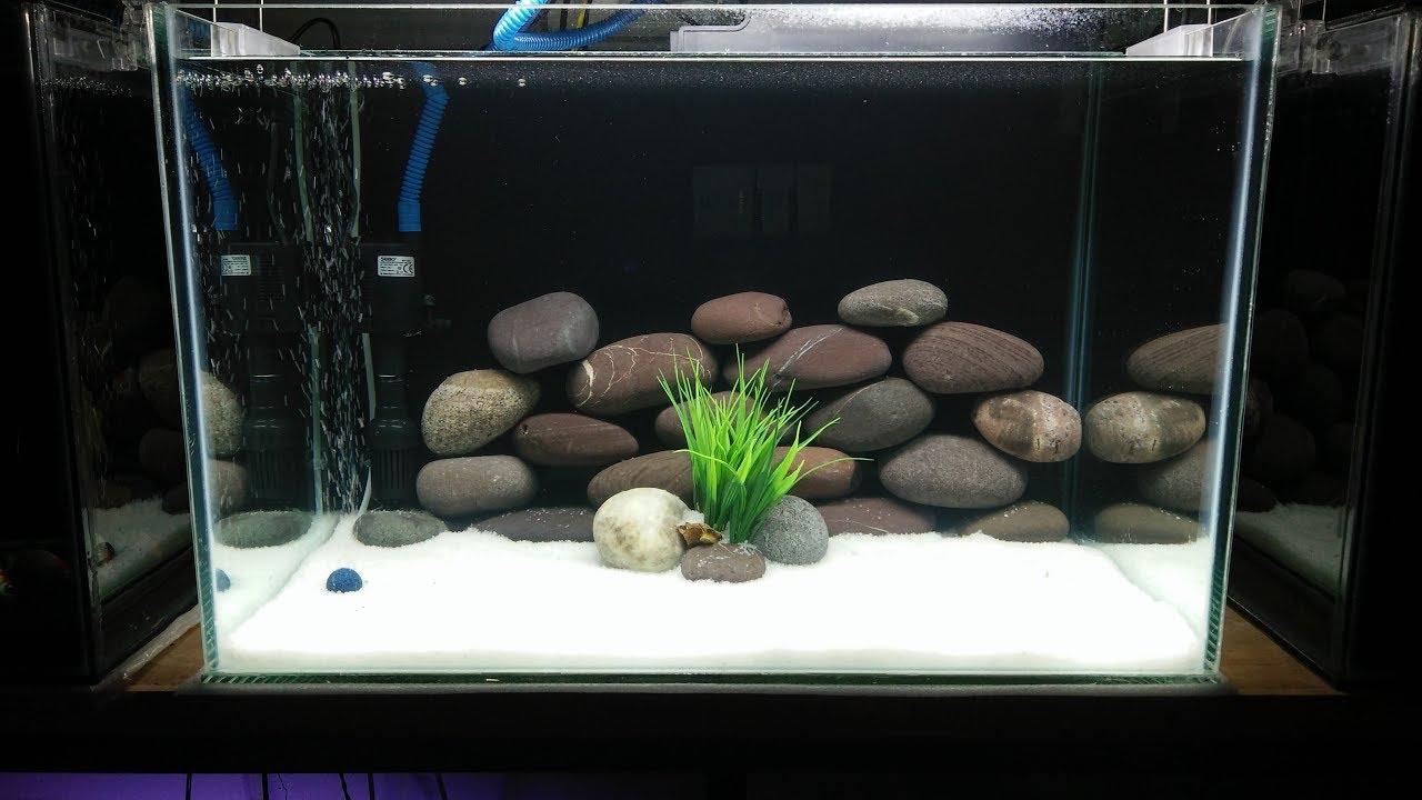freshwater aquarium setup 2018 youtube